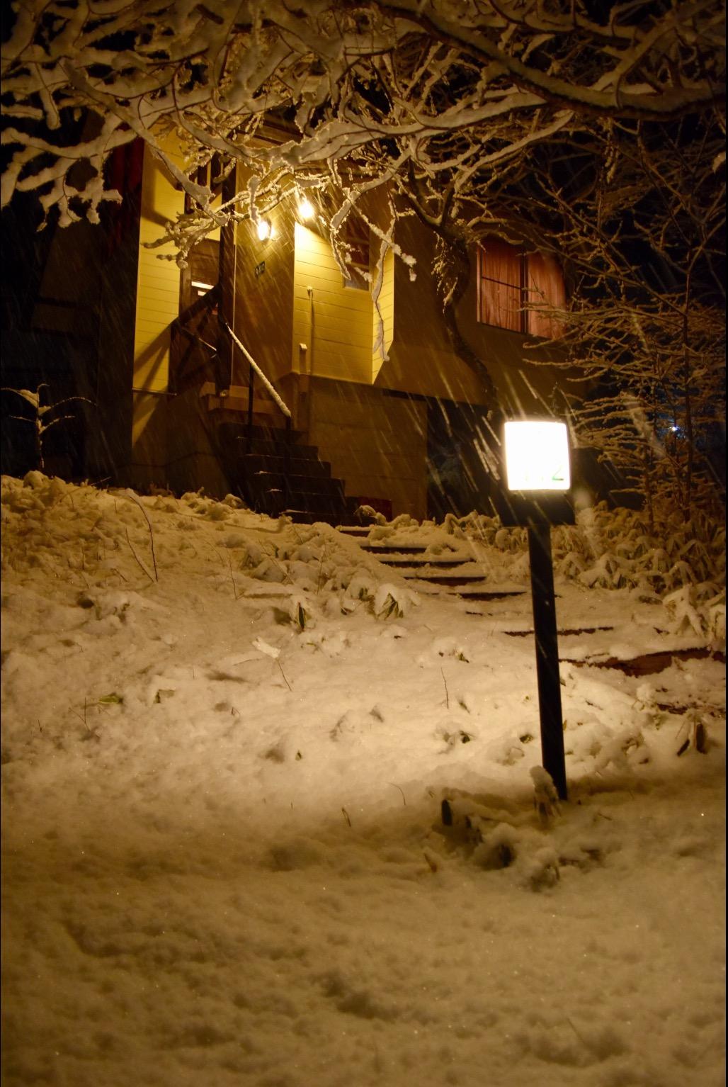 サイレンスの深まりとともに降り始めた雪。